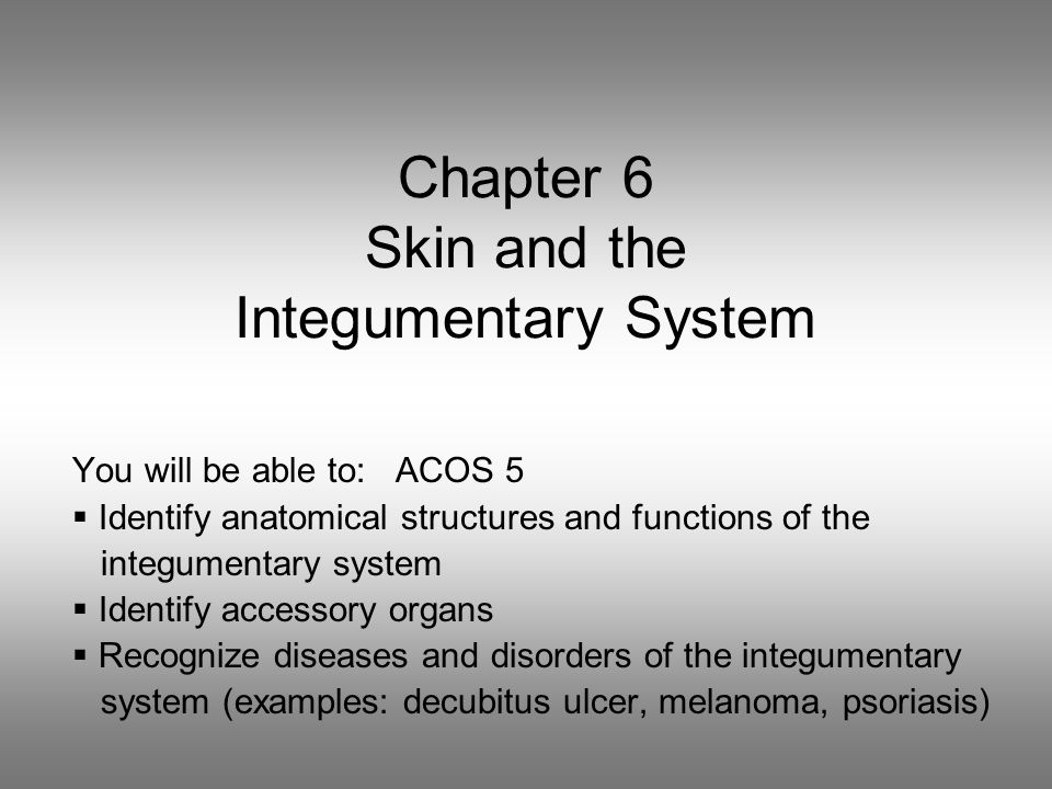 Chapter 6 Skin and the Integumentary System You will be able to: ACOS 5  Identify anatomical structures and functions of the integumentary system  Identify accessory organs  Recognize diseases and disorders of the integumentary system (examples: decubitus ulcer, melanoma, psoriasis)