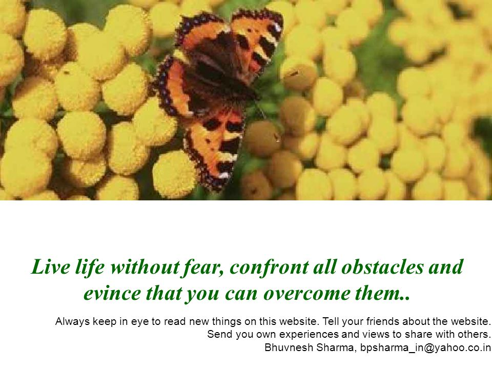Live life without fear, confront all obstacles and evince that you can overcome them.. Always keep in eye to read new things on this website. Tell you