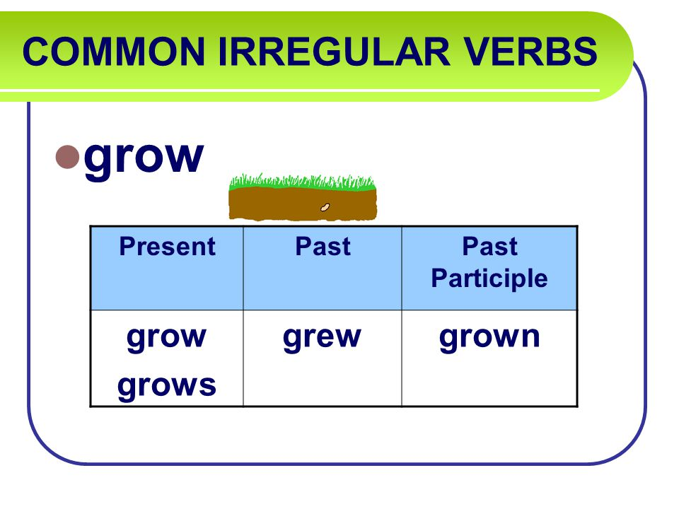 COMMON IRREGULAR VERBS grow PresentPastPast Participle grow grows grewgrown