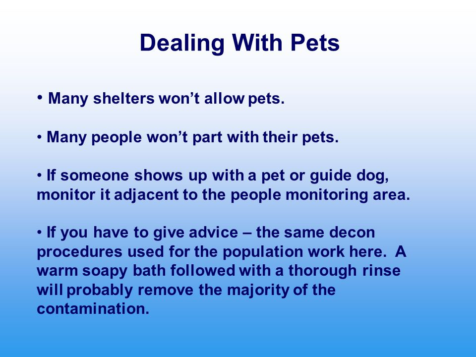 Dealing With Pets Many shelters won't allow pets. Many people won't part with their pets. If someone shows up with a pet or guide dog, monitor it adja
