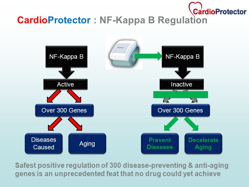 Safest positive regulation of 300 disease-preventing & anti-aging genes is an unprecedented feat that no drug could yet achieve NF-Kappa B Active Dise