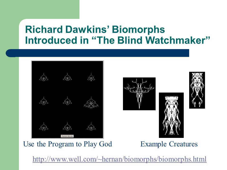 Richard Dawkins' Biomorphs Introduced in The Blind Watchmaker Example Creatures Use the Program to Play God http://www.well.com/~hernan/biomorphs/biomorphs.html