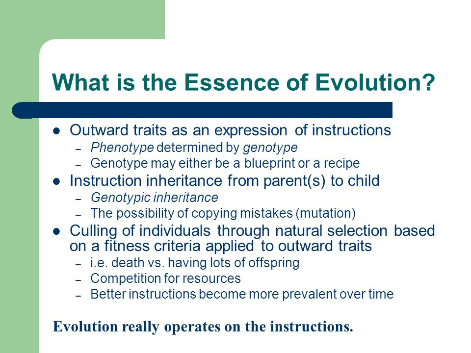 What is the Essence of Evolution? Outward traits as an expression of instructions – Phenotype determined by genotype – Genotype may either be a bluepr