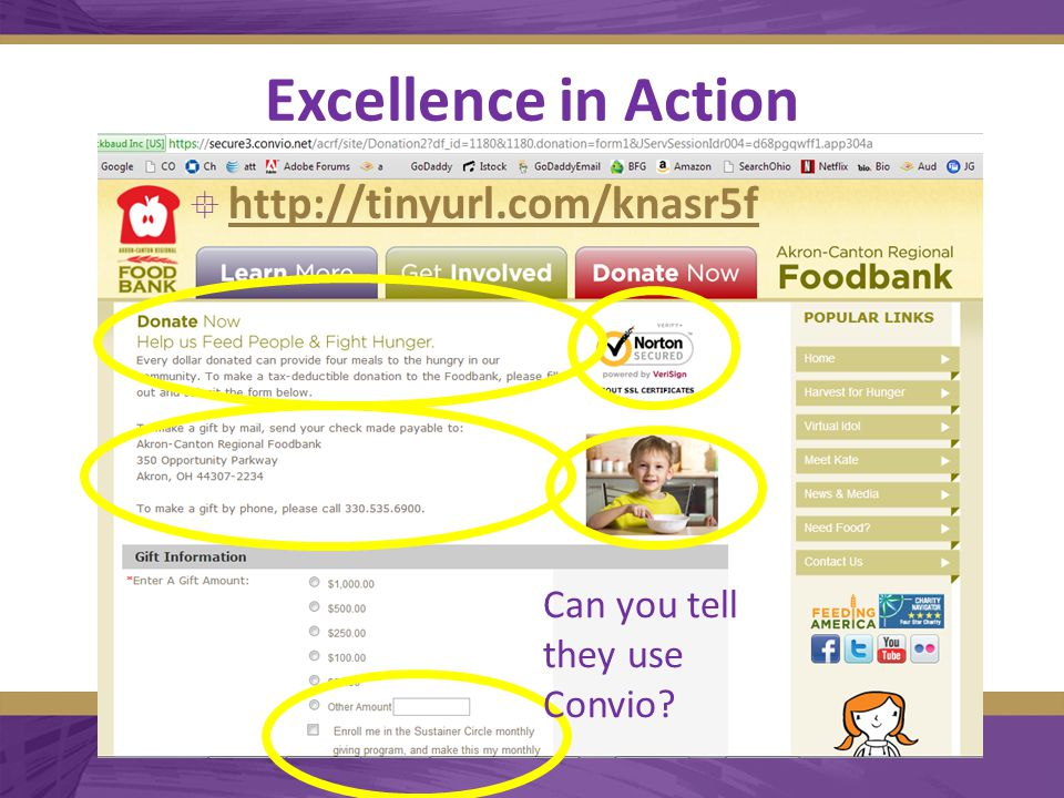 Excellence in Action  http://tinyurl.com/knasr5f http://tinyurl.com/knasr5f Can you tell they use Convio