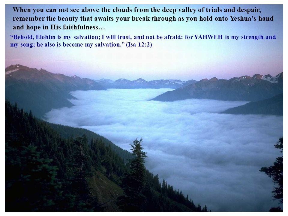 … he leadeth me beside the still waters.