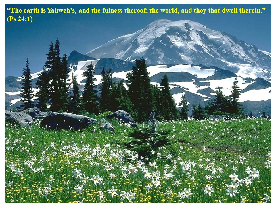 The earth is Yahweh's, and the fulness thereof; the world, and they that dwell therein. (Ps 24:1)