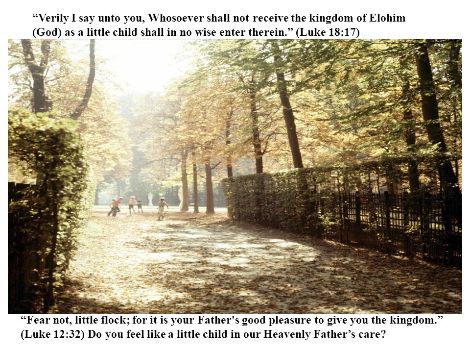 Now therefore in the sight of all Israel the congregation of Yahweh, and in the audience of our Elohim, keep and seek for all the commandments of Yahweh your Elohim: that ye may possess this good land, and leave it for an inheritance for your children after you for ever. (1 Chron 28:8)