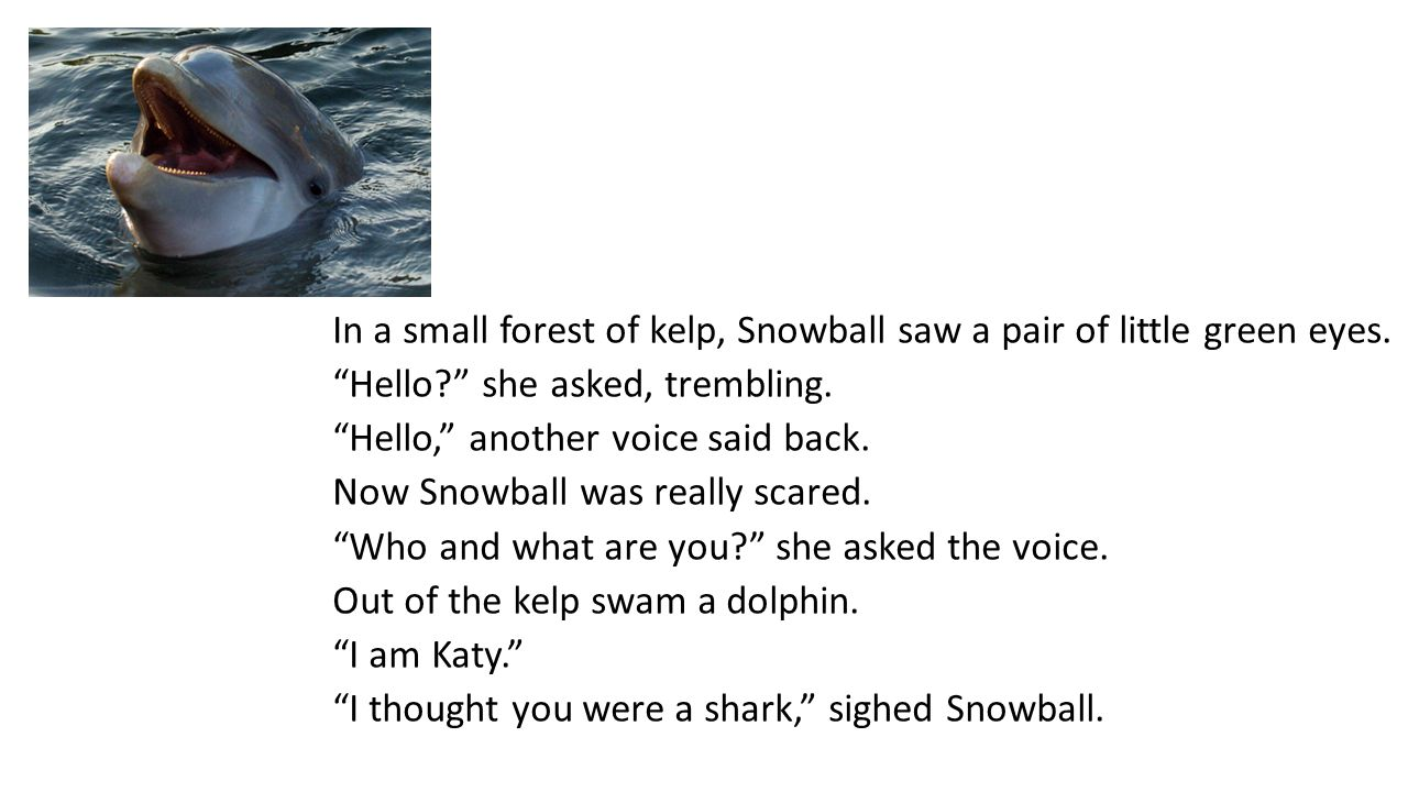 "In a small forest of kelp, Snowball saw a pair of little green eyes. ""Hello?"" she asked, trembling. ""Hello,"" another voice said back. Now Snowball was"