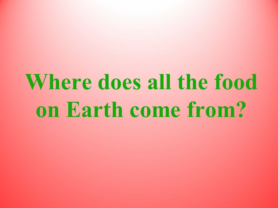 Where does all the food on Earth come from?