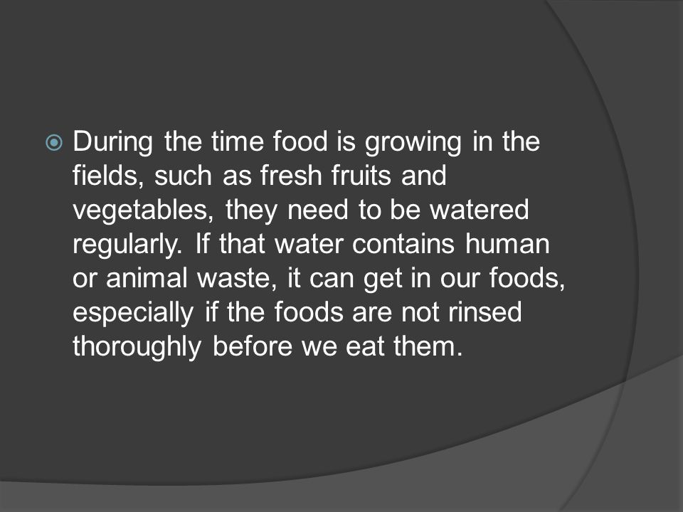  During the time food is growing in the fields, such as fresh fruits and vegetables, they need to be watered regularly.
