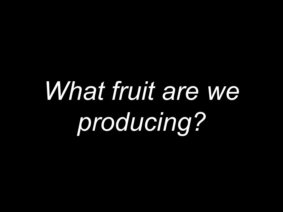 What fruit are we producing?
