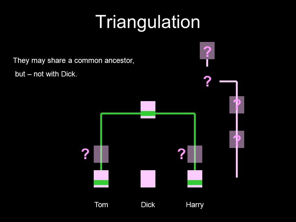 Triangulation Tom Dick Harry They may share a common ancestor, but – not with Dick. ? ? ? ? ??