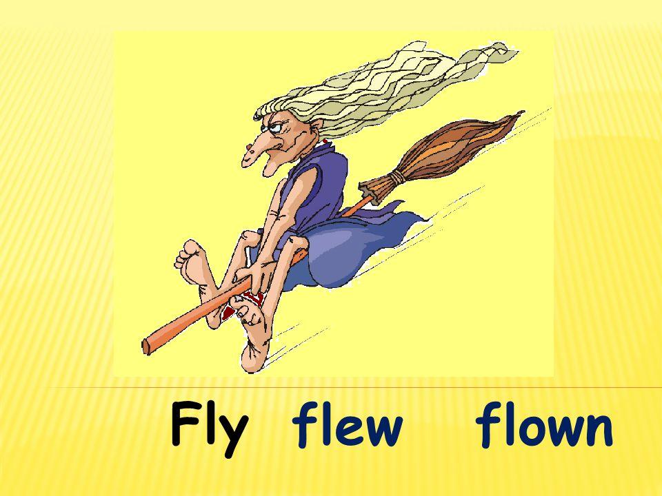 Fly flew flown