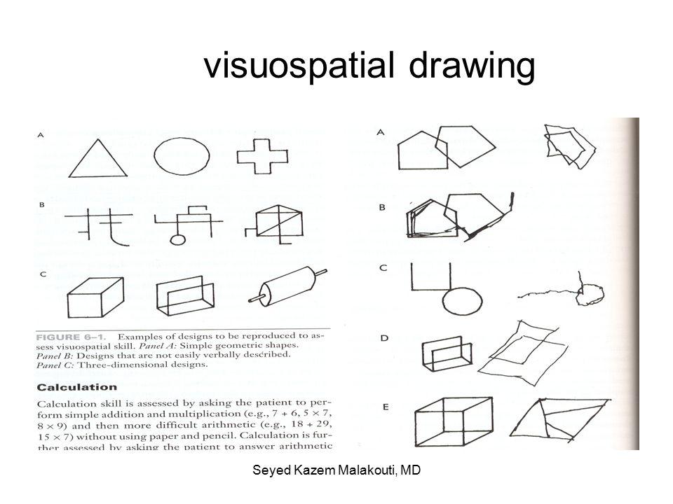 visuospatial drawing Seyed Kazem Malakouti, MD