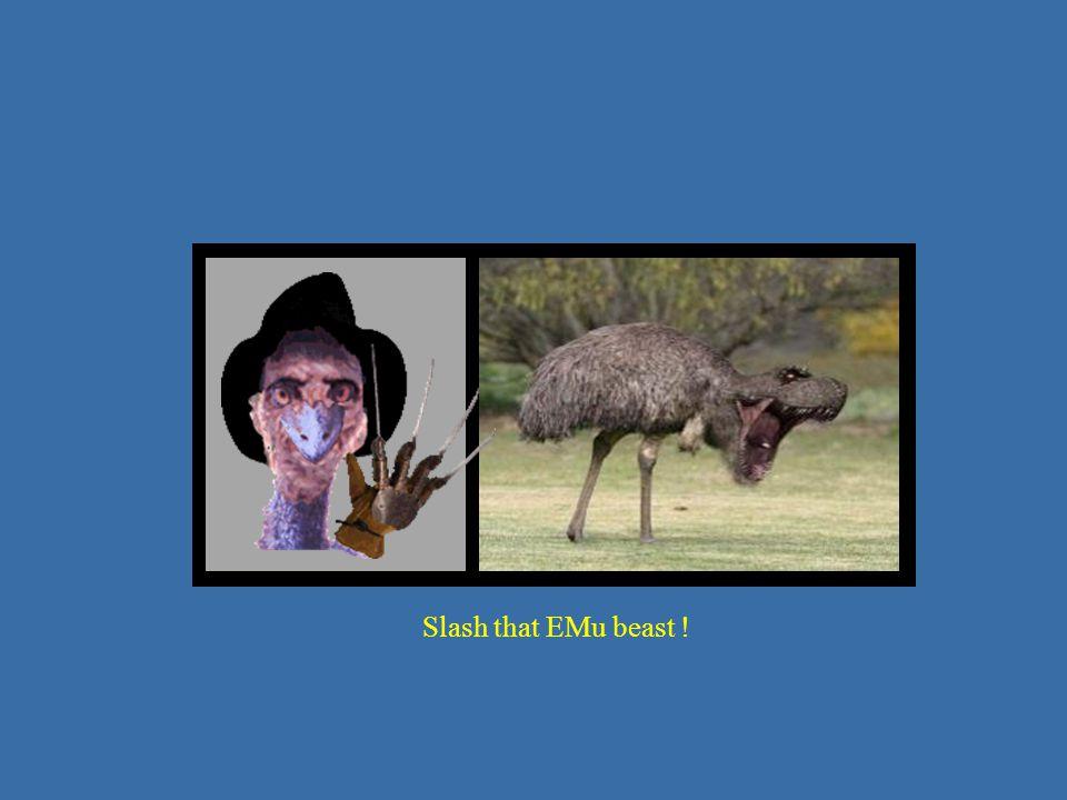 Slash that EMu beast !