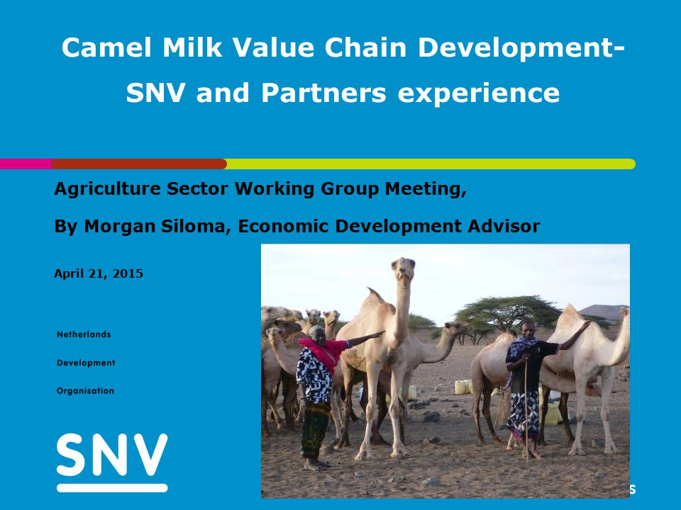 April 21, 2015 Camel Milk Value Chain Development- SNV and Partners experience Agriculture Sector Working Group Meeting, By Morgan Siloma, Economic De