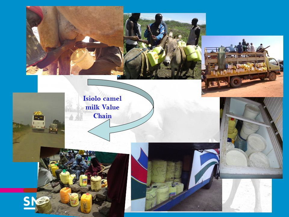 13 Title of presentation (change in master layout) Isiolo camel milk Value Chain