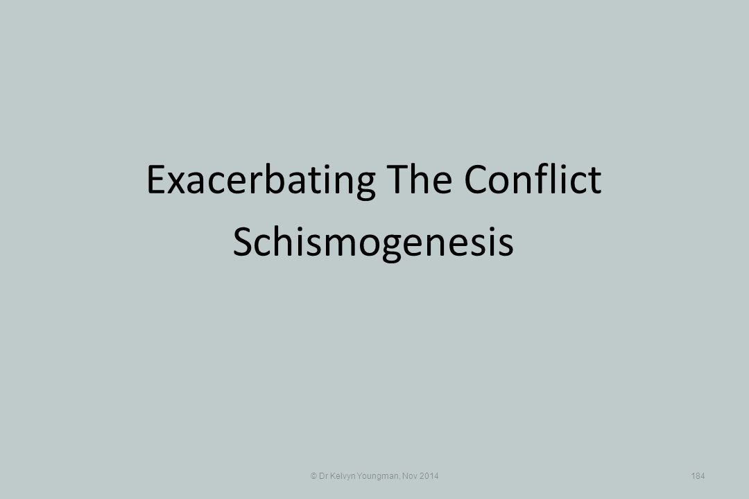 © Dr Kelvyn Youngman, Nov 2014184 Exacerbating The Conflict Schismogenesis