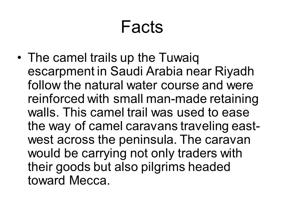 Facts The camel trails up the Tuwaiq escarpment in Saudi Arabia near Riyadh follow the natural water course and were reinforced with small man-made retaining walls.