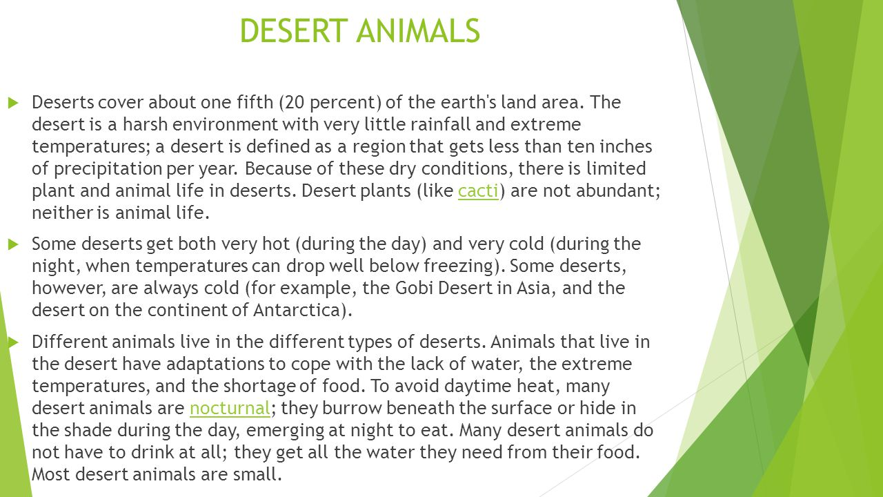 DESERT ANIMALS  Deserts cover about one fifth (20 percent) of the earth s land area.