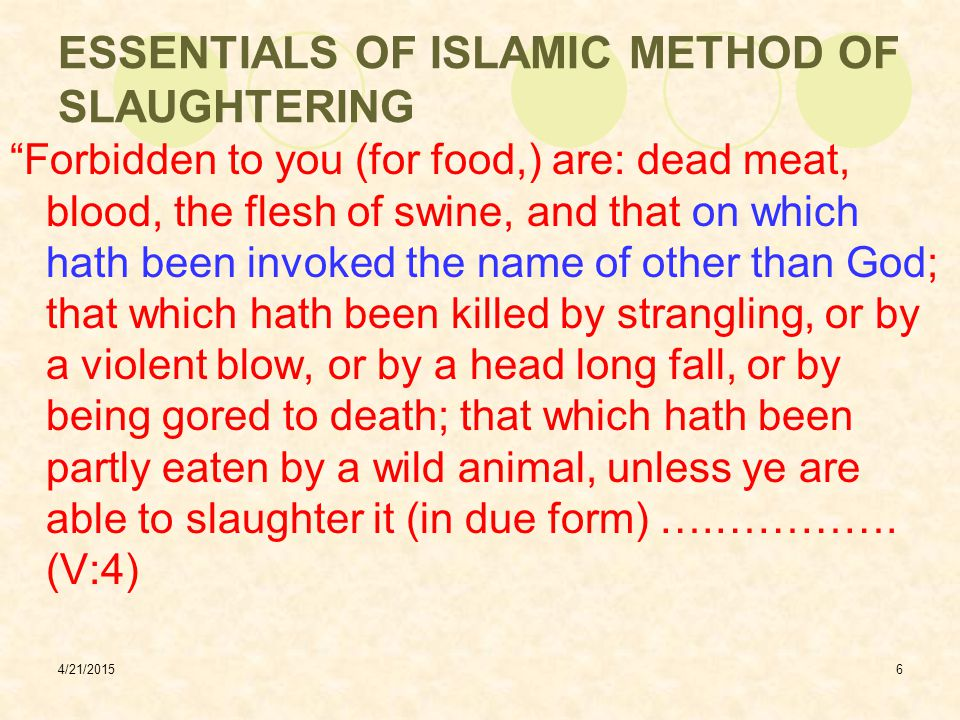 4/21/20157 ESSENTIALS OF ISLAMIC METHOD OF SLAUGHTERING Tazkiyah means purification - cleaning meat of blood by slaughter Consumption of blood prohibited in Holy Scriptures:  Holy Bible - Leviticus 3:17 and 7:26  Holy Quran - VI:146 All lawful animals and birds contain blood Blood must be drained as per these commands