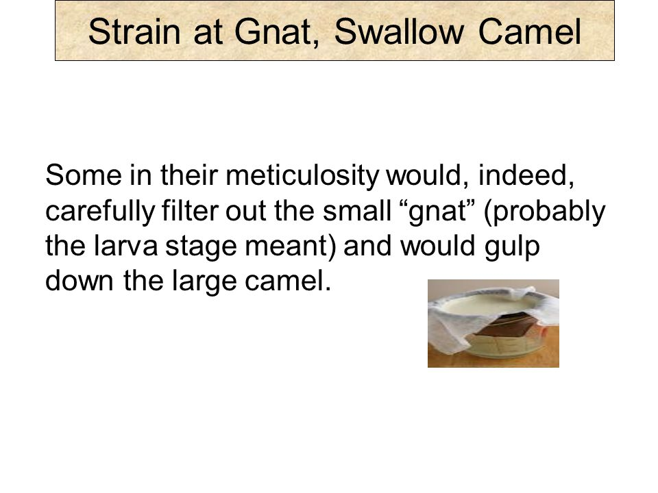 Strain at Gnat, Swallow Camel Submission: Stresses obedience but ignores and lacks the impetus, love (Gal.