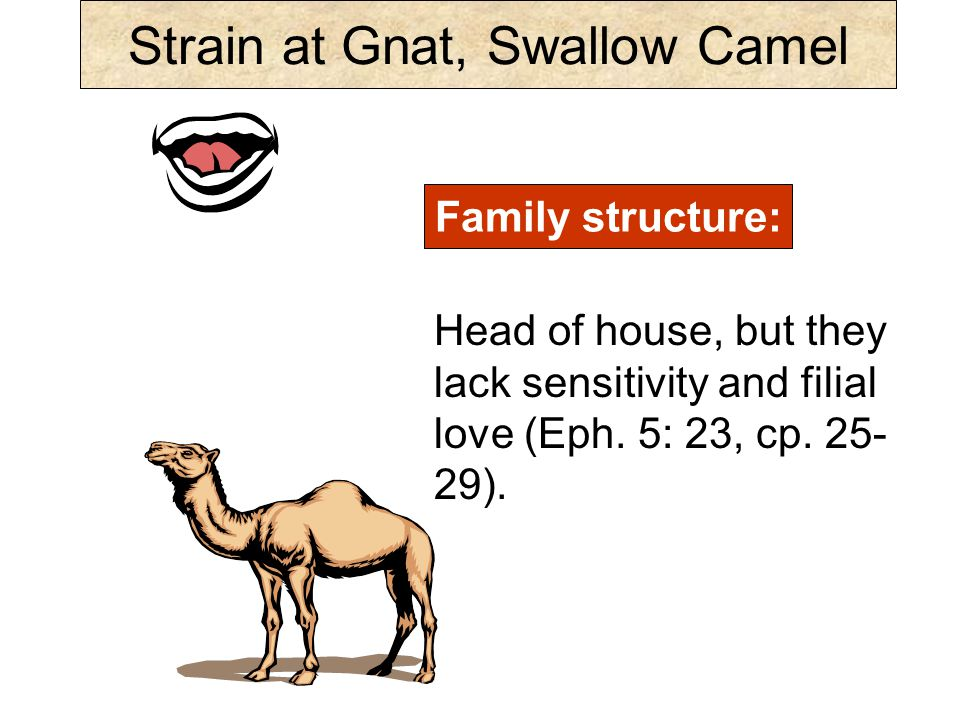 Strain at Gnat, Swallow Camel Family structure: Head of house, but they lack sensitivity and filial love (Eph.