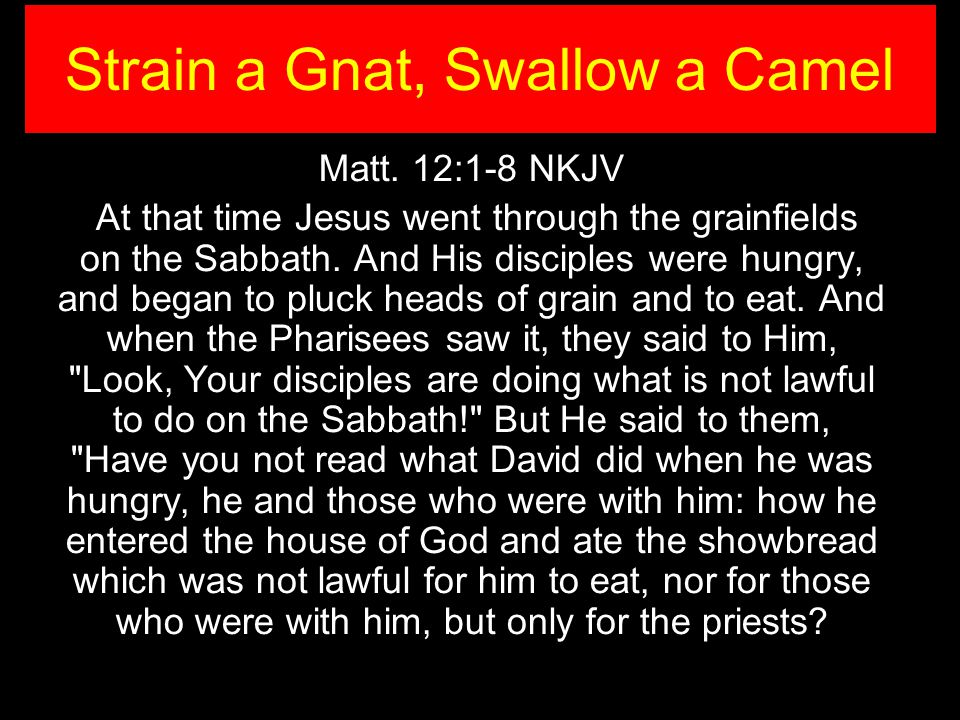 Matt. 12:1-8 NKJV At that time Jesus went through the grainfields on the Sabbath. And His disciples were hungry, and began to pluck heads of grain and