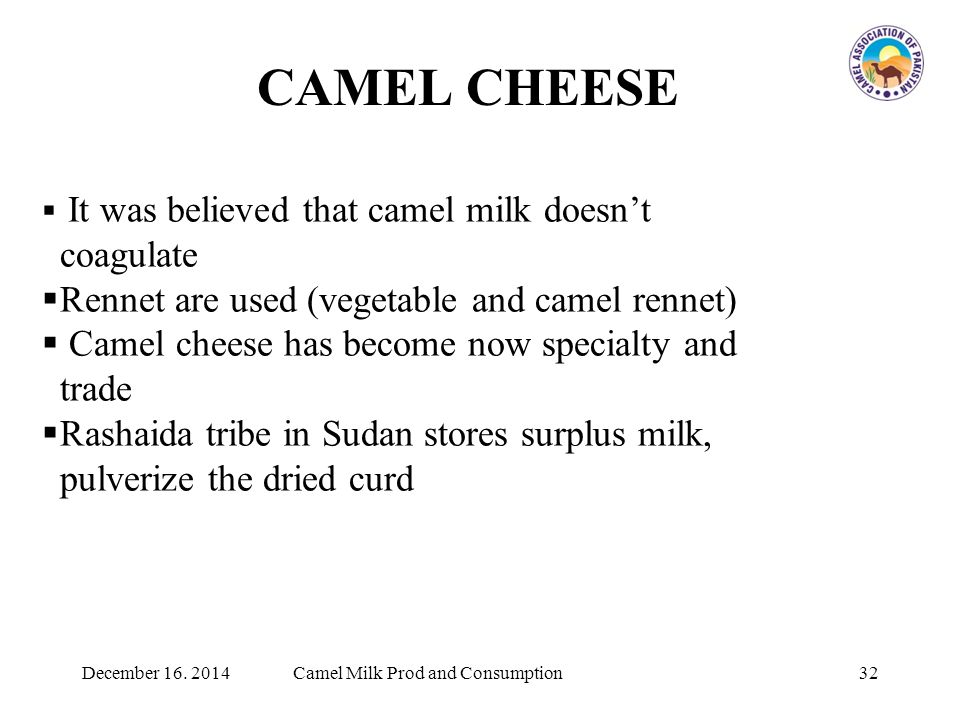 CAMEL CHEESE  It was believed that camel milk doesn't coagulate  Rennet are used (vegetable and camel rennet)  Camel cheese has become now specialty and trade  Rashaida tribe in Sudan stores surplus milk, pulverize the dried curd 32Camel Milk Prod and ConsumptionDecember 16.