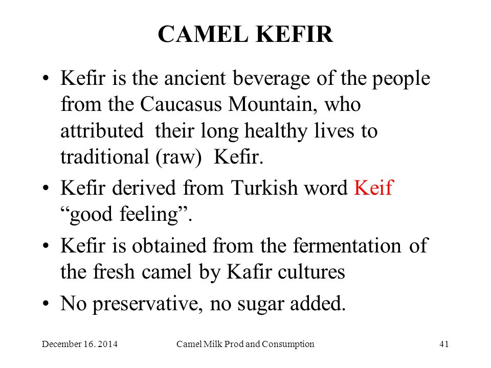 CAMEL KEFIR Kefir is the ancient beverage of the people from the Caucasus Mountain, who attributed their long healthy lives to traditional (raw) Kefir.