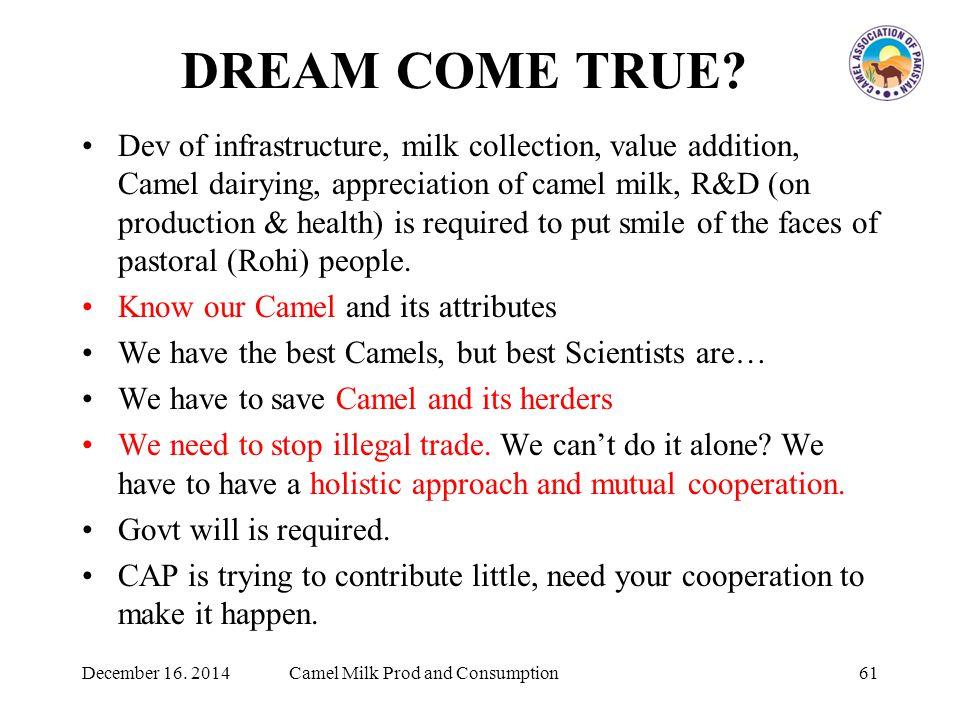 DREAM COME TRUE.