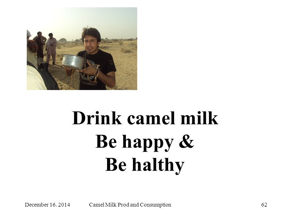 Drink camel milk Be happy & Be halthy 62Camel Milk Prod and ConsumptionDecember 16. 2014