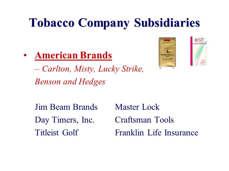 Tobacco Company Subsidiaries American Brands –Carlton, Misty, Lucky Strike, Benson and Hedges Jim Beam BrandsMaster Lock Day Timers, Inc.Craftsman Too