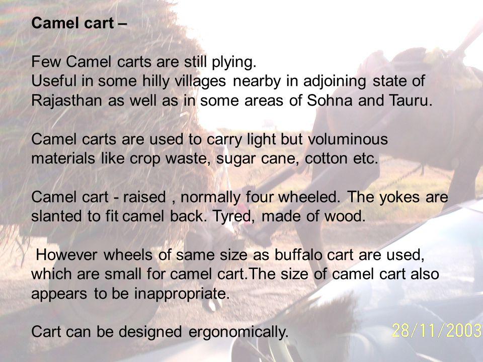 Camel cart – Few Camel carts are still plying.