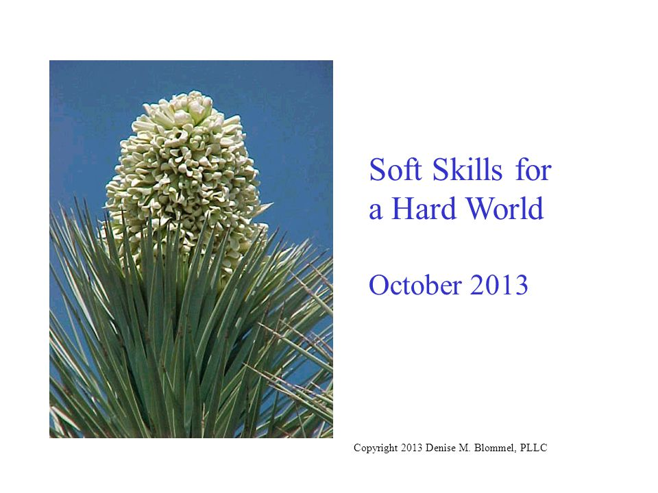 Soft Skills for a Hard World October 2013 Copyright 2013 Denise M. Blommel, PLLC