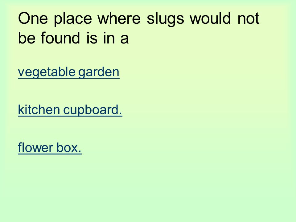 One place where slugs would not be found is in a vegetable garden kitchen cupboard. flower box.
