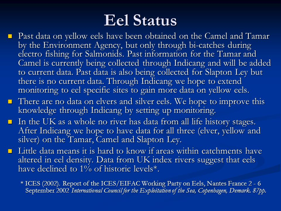 Eel Status Past data on yellow eels have been obtained on the Camel and Tamar by the Environment Agency, but only through bi-catches during electro fishing for Salmonids.