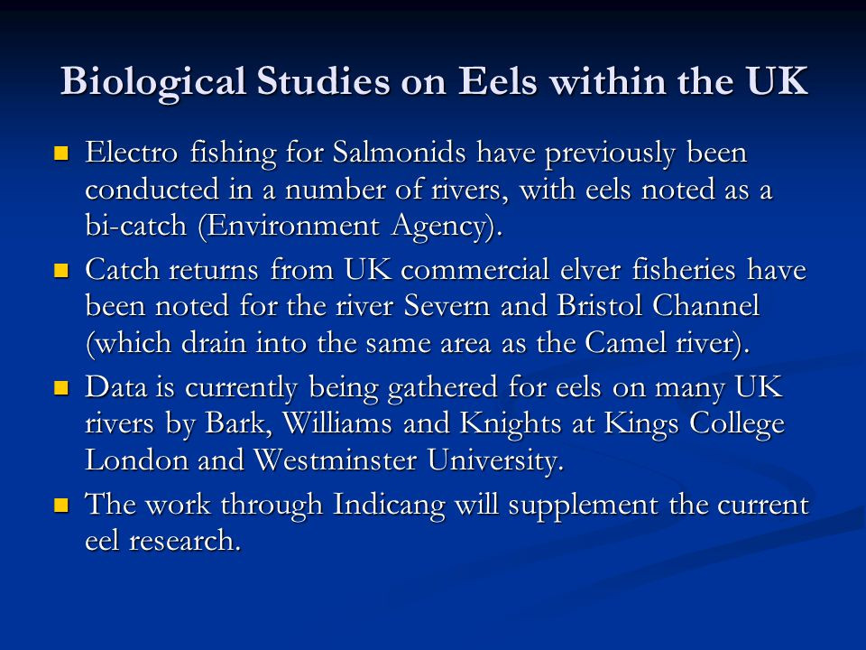 Biological Studies on Eels within the UK Electro fishing for Salmonids have previously been conducted in a number of rivers, with eels noted as a bi-catch (Environment Agency).