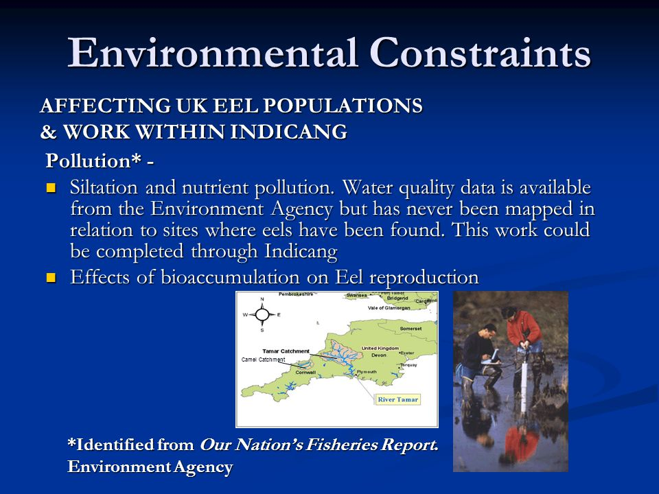 Environmental Constraints Camel Catchment Pollution* - Siltation and nutrient pollution.