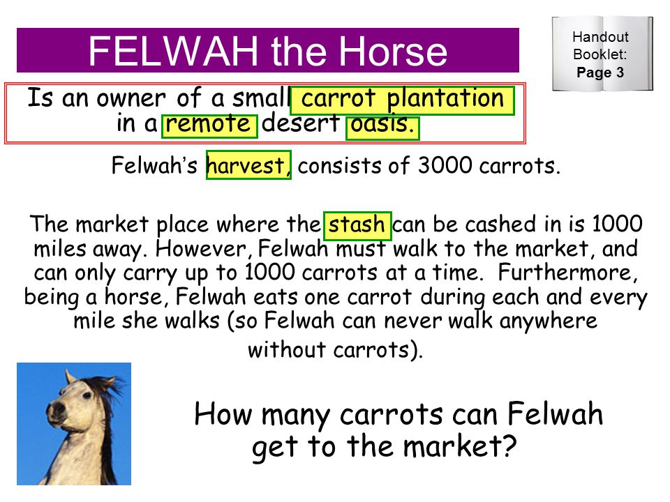 FELWAH the Horse Is an owner of a small carrot plantation in a remote desert oasis.