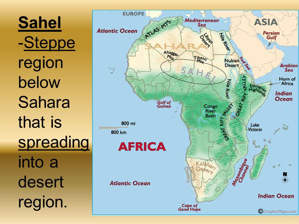 Sahel -Steppe region below Sahara that is spreading into a desert region.