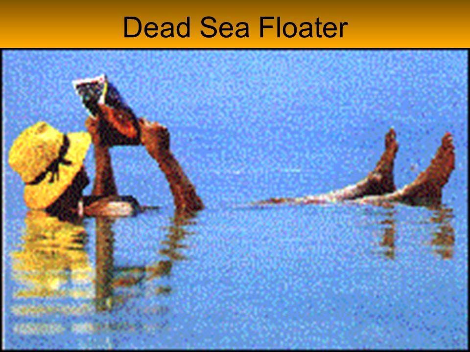 Dead Sea Floater
