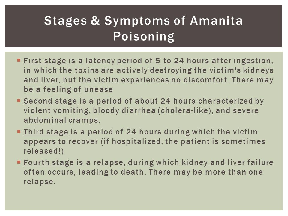 Stages & Symptoms of Amanita Poisoning  First stage is a latency period of 5 to 24 hours after ingestion, in which the toxins are actively destroying the victim s kidneys and liver, but the victim experiences no discomfort.
