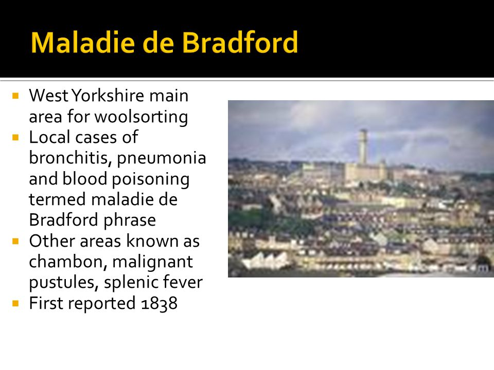  West Yorkshire main area for woolsorting  Local cases of bronchitis, pneumonia and blood poisoning termed maladie de Bradford phrase  Other areas known as chambon, malignant pustules, splenic fever  First reported 1838