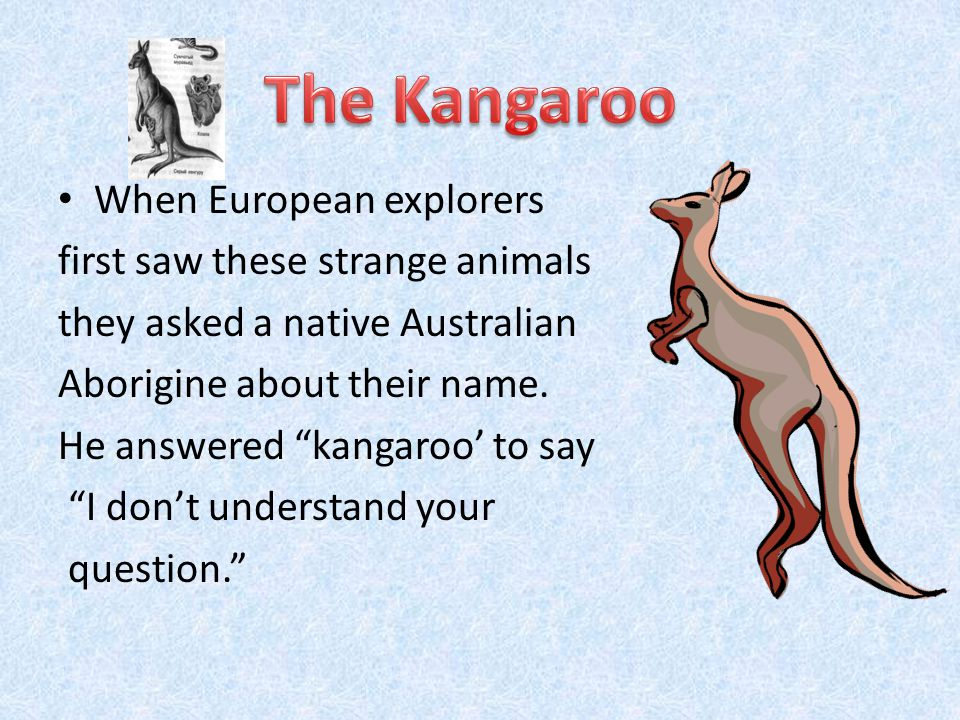 They are marsupial (сумчатые), endemic (свойственные данной местности): The kangaroo The koala The wombat The echidna The platypus The dingo The emu The kookaburra