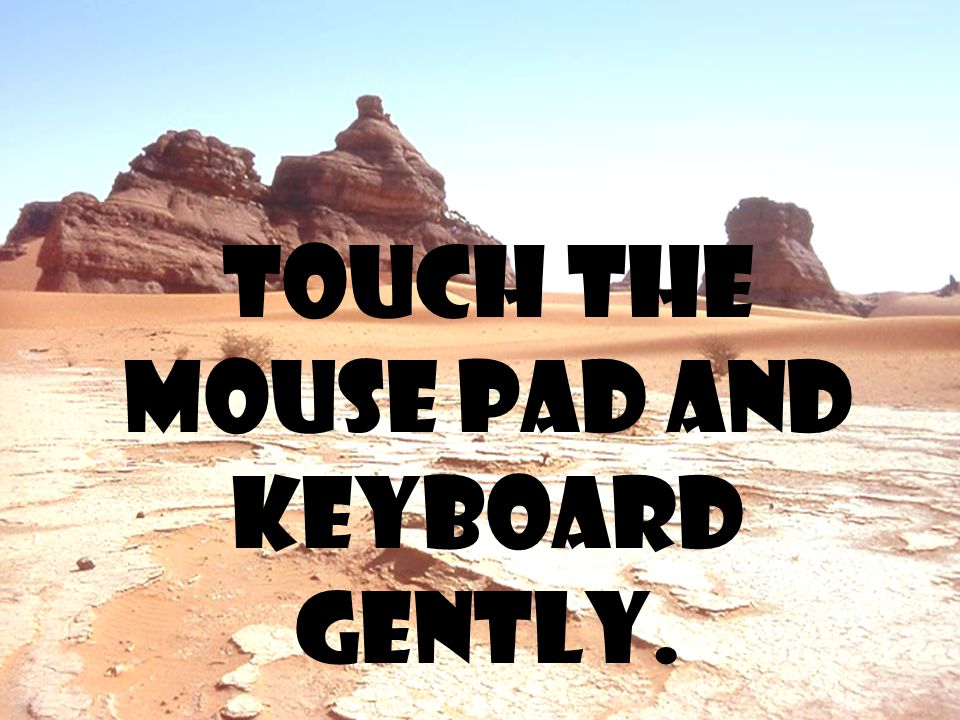 Touch the mouse pad and keyboard gently.