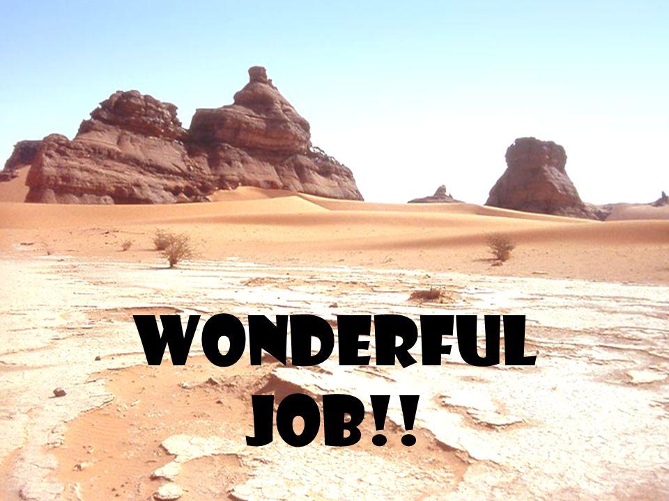 Wonderful job!!