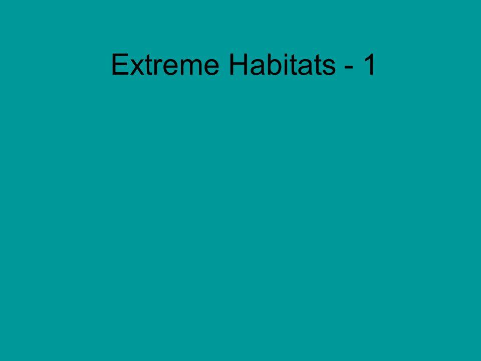 Extreme Habitats - 1