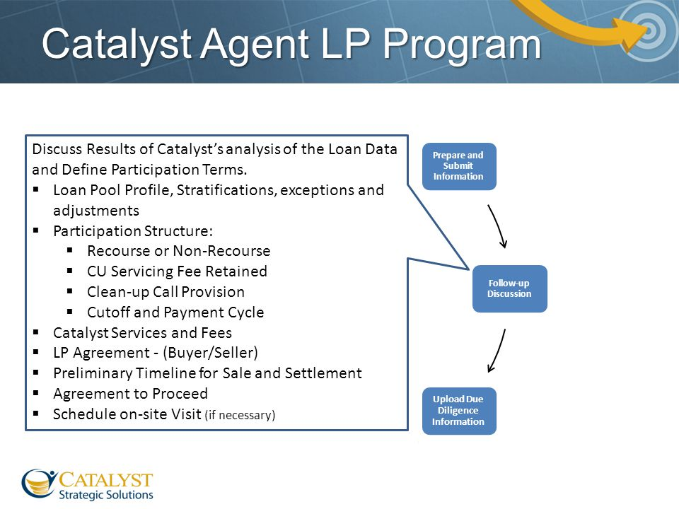 Catalyst Agent LP Program Discuss Results of Catalyst's analysis of the Loan Data and Define Participation Terms.  Loan Pool Profile, Stratifications