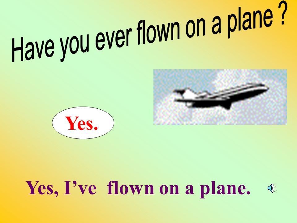 9. No. No, I've never flown on a plane.